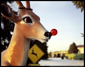 RudolphLo